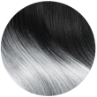 CALIFORNIANA 1/GRIS